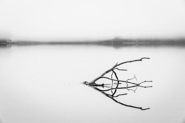 Photo by Tim Sostre on Unsplash